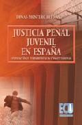 La Justicia Penal Juvenil En España. Legislacion Y Jurisprudencia Constitucional por Tomas Montero Hernanz epub