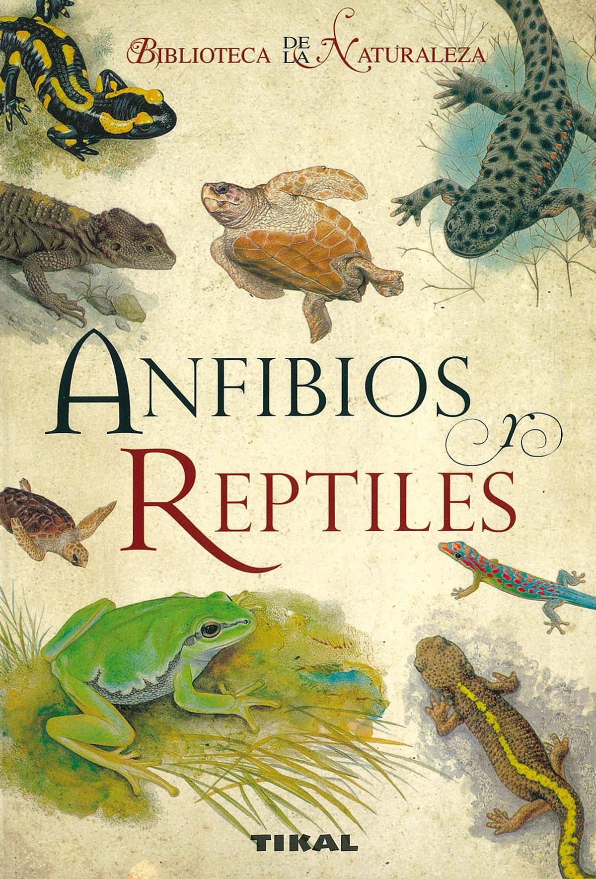 Anfibios Y Reptiles por Vaclav Lanka;                                                                                    Zbysek Vit epub