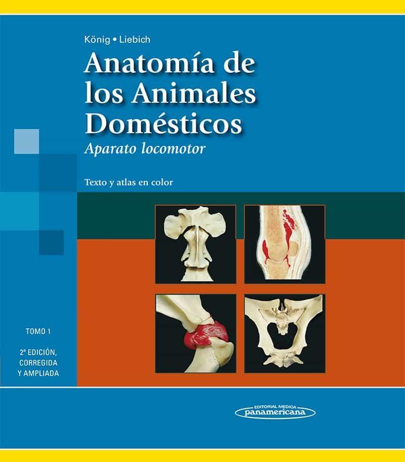 ANATOMIA DE LOS ANIMALES DOMESTICOS (TOMO 1): EL APARATO LOCOMOTO R ...