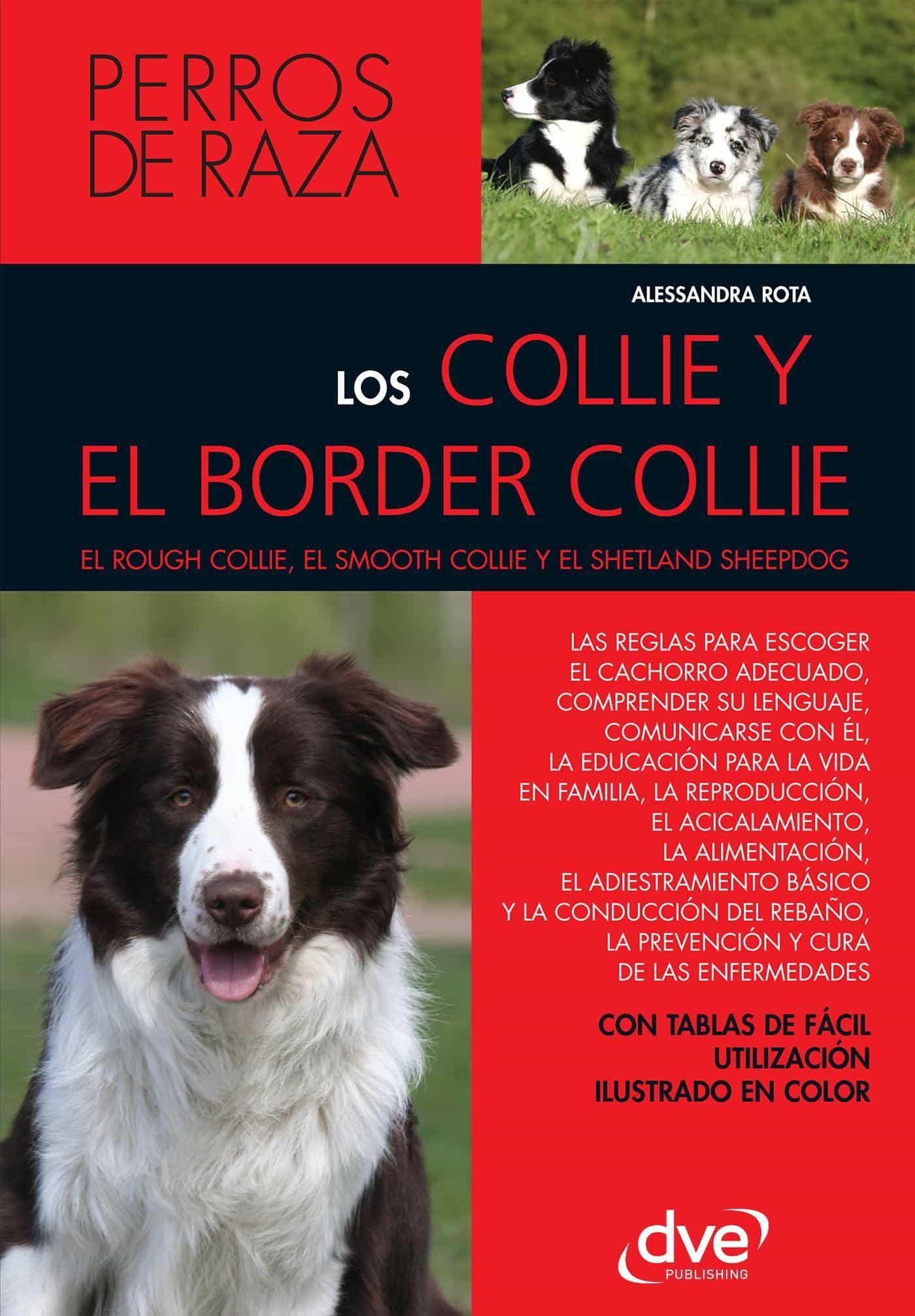 LOS COLLIE Y EL BORDER COLLIE EBOOK   ALESSANDRA ROTA   Descargar ...
