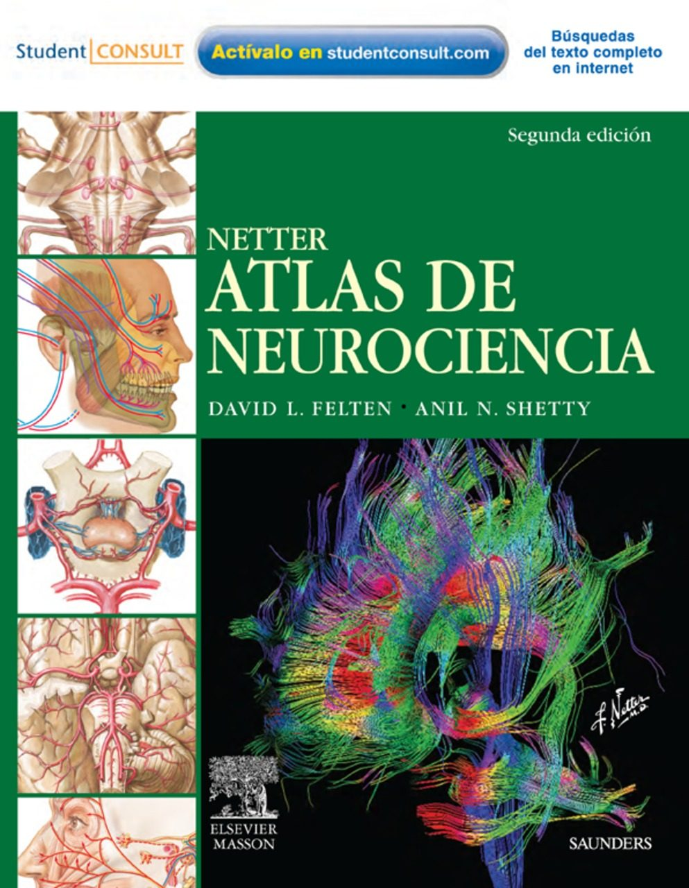 NETTER. ATLAS DE NEUROCIENCIAS EBOOK | D. L. FELTEN | Descargar ...