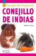 50 Consejos De Oro Para Tu Conejillo De Indias por Amanda O Neill