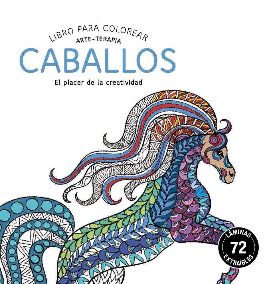 CABALLOS: LIBRO PARA COLOREAR: ARTE-TERAPIA | VV.AA. | Comprar libro ...