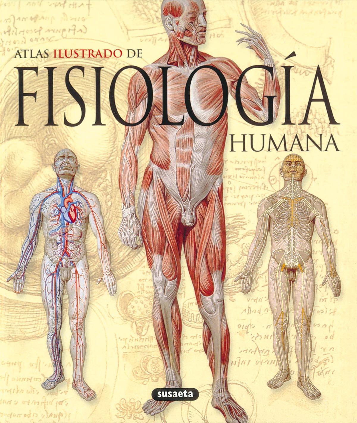 FISIOLOGIA HUMANA: ATLAS ILUSTRADO | VV.AA. | Comprar libro ...