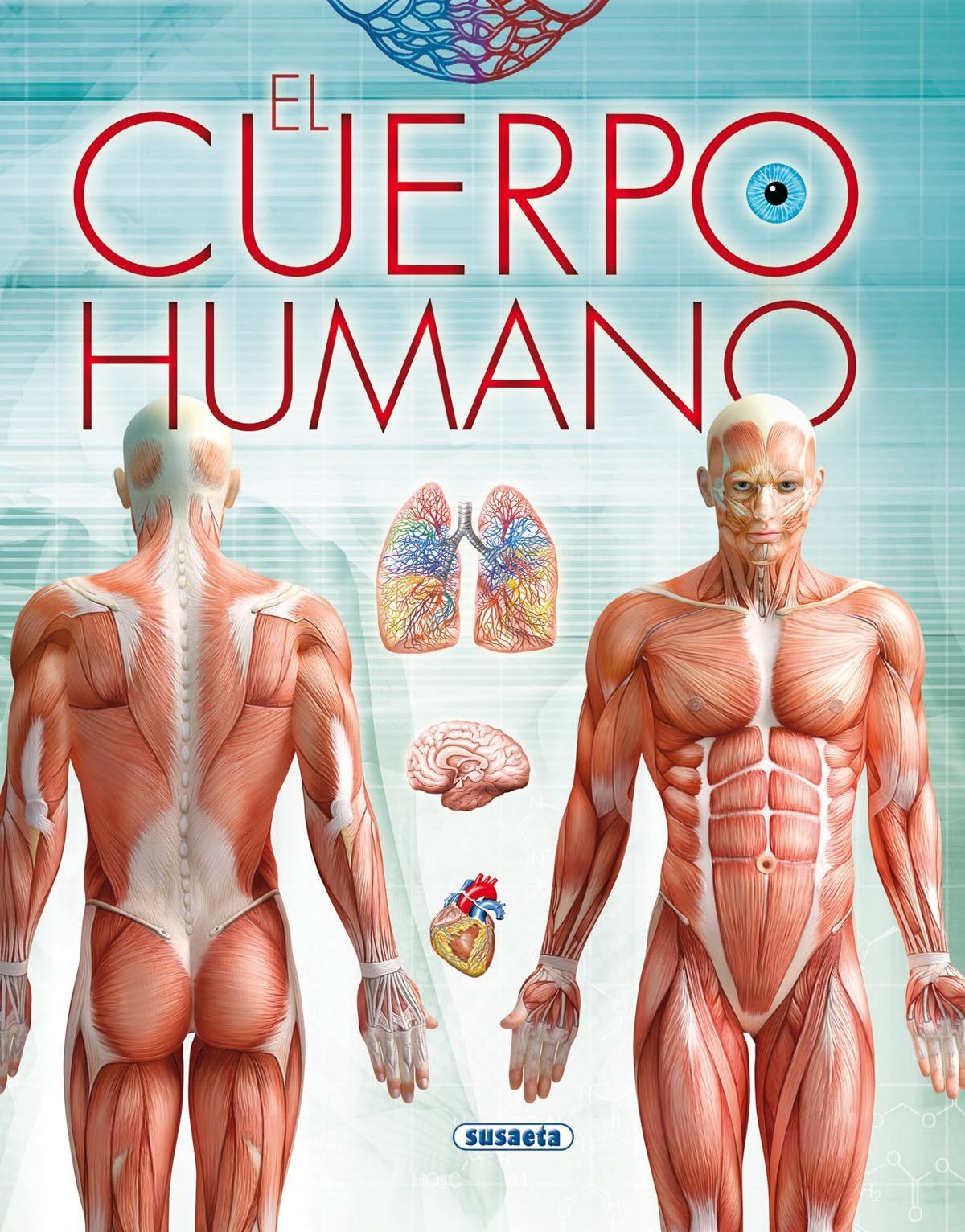 EL CUERPO HUMANO   VV.AA.   Comprar libro 9788467740066