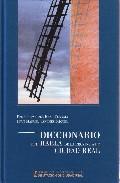 Diccionario Del Habla De La Provincia De Ciudad Real por Juan Manuel Sanchez Miguel epub