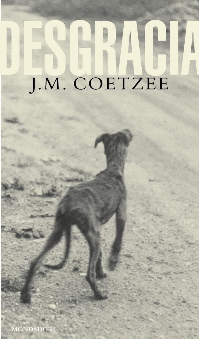 desgracia j.m.coetzee