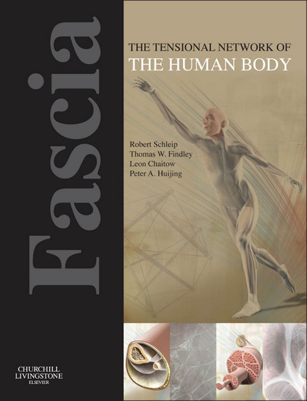 FASCIA: THE TENSIONAL NETWORK OF THE HUMAN BODY - E-BOOK EBOOK ...
