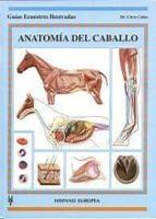 anatomia del caballo chris colles 9788425515736