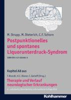 postpunktionelles und spontanes liquorunterdruck syndrom (ebook) m. strupp m. dieterich c. f. schorn 9783170245846