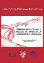 derechos intelectuales y derecho a la imagen en la jurisprudencia comparada-ricardo antequera parilli-9788429016956