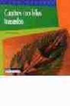 cuadros con hilos tensados (como hacerlo)-christel claudius-9788432983856