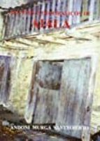 apuntes etnograficos de aiala-andoni murga santxoierto-9788461413256