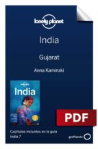 india 7_17. gujarat (ebook)-abigail blasi-michael benanav-9788408197966