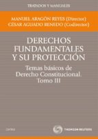 t3 derechos fundamentales y su proteccion:  temas basicos de dere cho constitucional cesar aguado renedo manuel aragon reyes 9788447035366