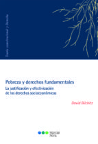 pobreza y derechos fundamentales: la justificacion y efectivizacion de los derechos socieconomicos-david bilchitz-9788491230366