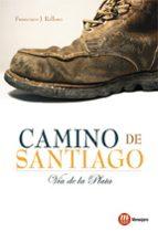 camino de santiago: la via de la plata-francisco j. relloso-9788427130876