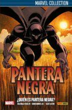 PANTERA NEGRA 1: ¿QUIEN ES PANTERA NEGRA?