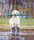365 PENSAMIENTOS PARA SONREIR - 9788416279326 - VV.AA.