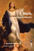 MARIA, CAMINO DE PERFECCION - 9788441439146 - SANTIAGO MARTIN RODRIGUEZ