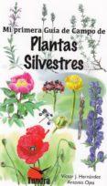 PLANTAS SILVESTRES. MI PRIMERA GUIA DE CAMPO - 9788416702466 - VICTOR J. HERNANDEZ