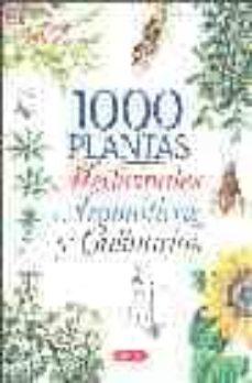 Permacultivo.es 1000 Plantas Medicinales, Aromaticas Y Culinarias Image