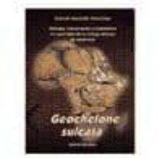 Srazceskychbohemu.cz Geochelone Sulcata: Biologia, Conservacion Y Mantenimiento En Cau Tividad De La Tortuga Africana De Espolones Image