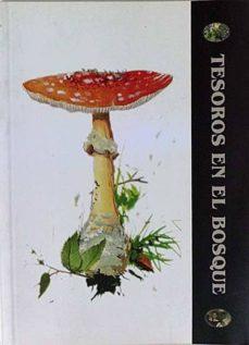 Mrnice.mx Tesoros En El Bosque Image