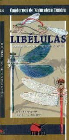 Ironbikepuglia.it Libelulas Image