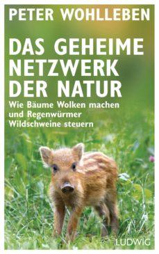 das geheime netzwerk der natur (ebook)-peter wohlleben-9783641207076