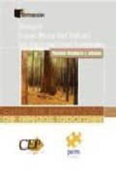 Geekmag.es Curso De Prevencion De Riesgos Laborales. Sector Madera Y Afines: Riesgos Especificos Del Trabajo En Explotaciones Forestales Image