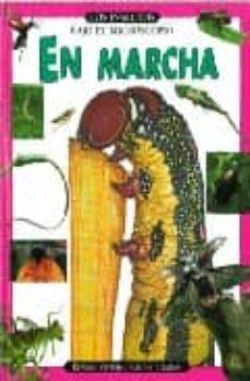 Elmonolitodigital.es En Marcha (Los Insectos Bajo El Microscopio) Image