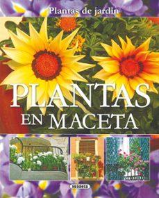 Upgrade6a.es Plantas En Maceta Image