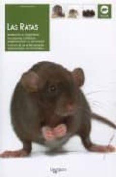 Carreracentenariometro.es Las Ratas Image