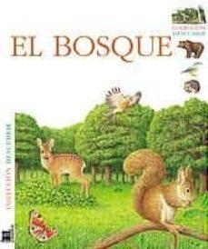Inmaswan.es Decubrir: El Bosque Image