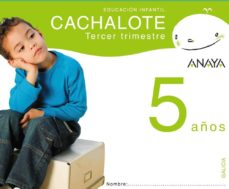 Srazceskychbohemu.cz Cachalote 5 Años. Tercer Trimestre. Galicia Educación Infantil 3-5 Años Image