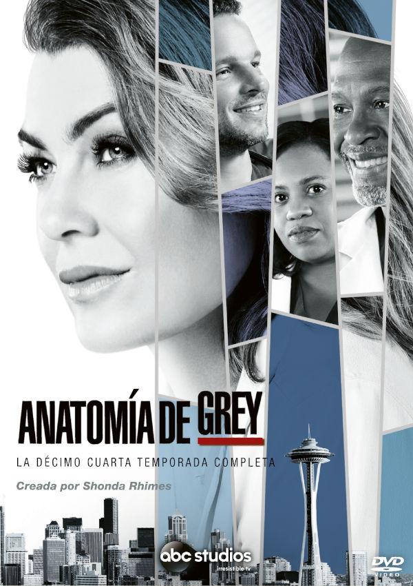 ANATOMIA DE GREY - DVD - LA DECIMO CUARTA TEMPORADA COMPLETA de ...